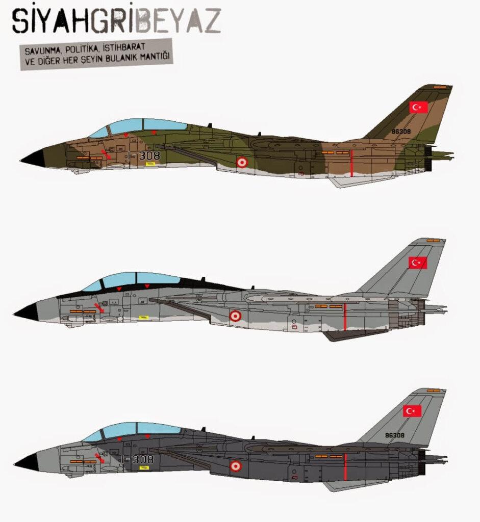Eğer gerçekleşseydi Türk F-14'leri- What if Turkish F-14